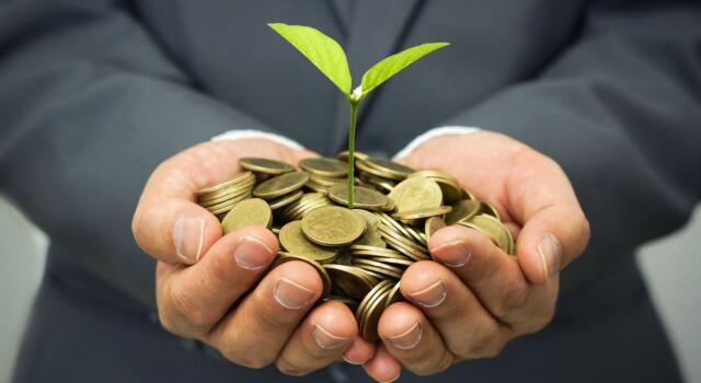 Perché anche le startup dovrebbero investire nella sostenibilità?