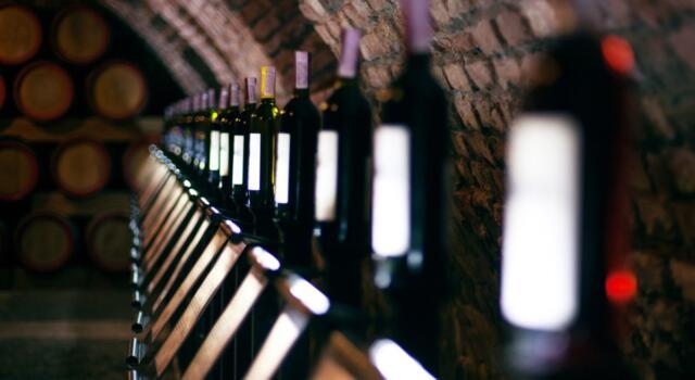 Il vino italiano leader nel mondo per produzione, export e lavoro