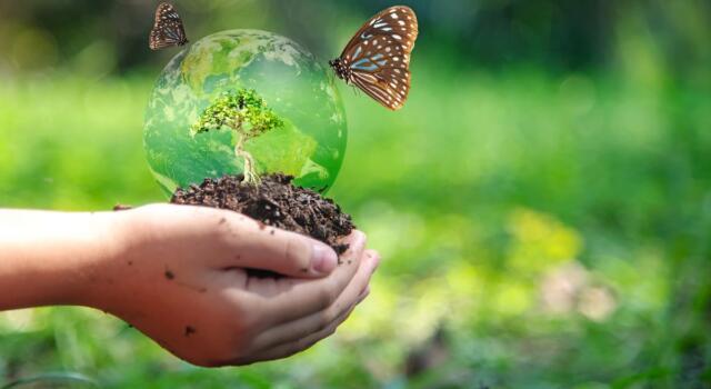 Biodiversità, cos'è e perché è così importante per il pianeta