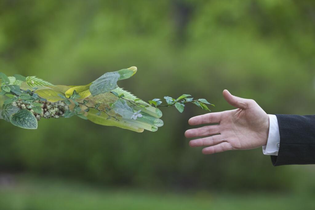 Stretta di mano tra uomo e natura