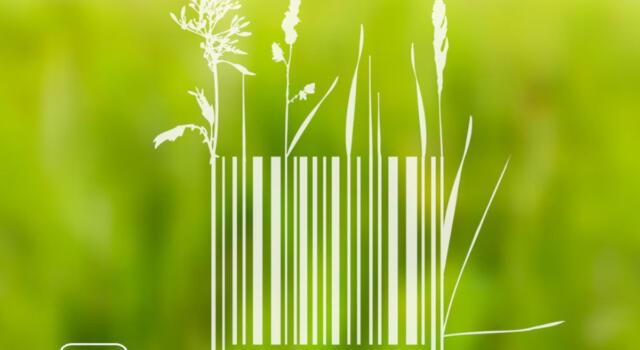 Cos'è Made Green in Italy, il marchio di certificazione d'eccellenza ambientale dei prodotti italiani