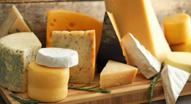 L'Italia è il primo esportatore di formaggi negli Stati Uniti