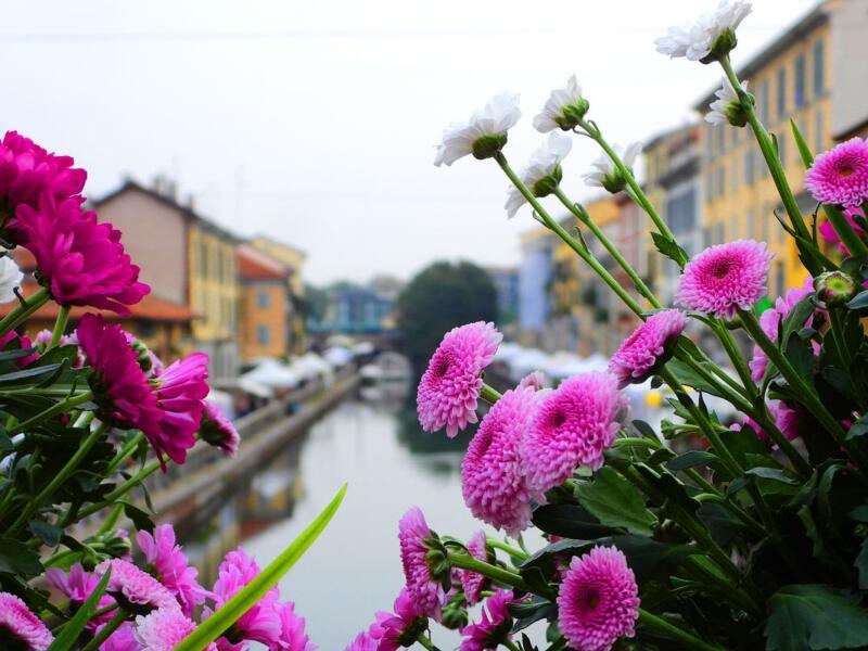 Orticola 2021, un tripudio di piante e fiori avvolge Milano