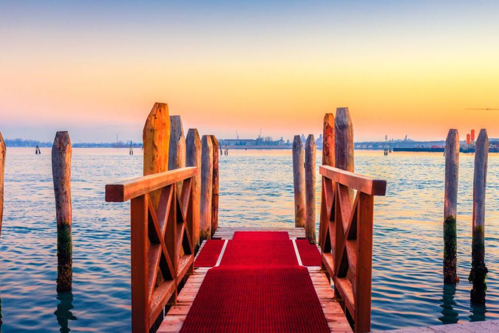 Il red carpet sul Lido di Venezia