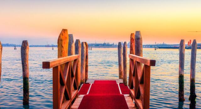 """Venezia 78, come funziona il red carpet """"murato"""" della Mostra"""